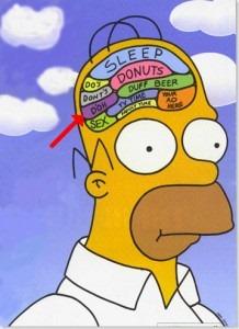 10 procent hersenen