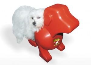 sex speeltje voor honden