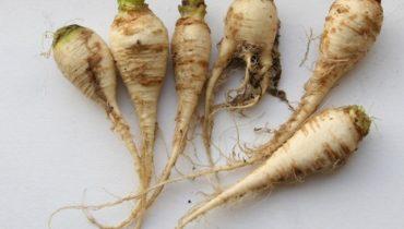 vergeten-groenten