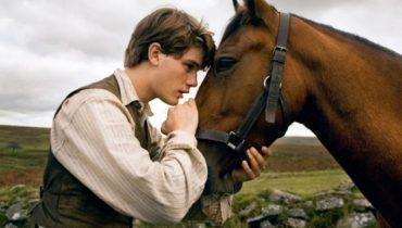 paardenfilms