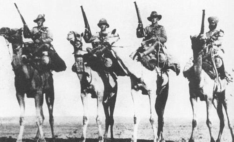 kamelen in de oorlog