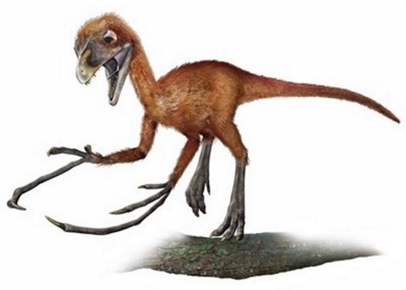 top 10 dinosaurussen met een vreemd uiterlijk - alletop10lijstjes