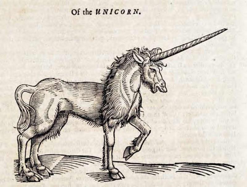 eenhoorn