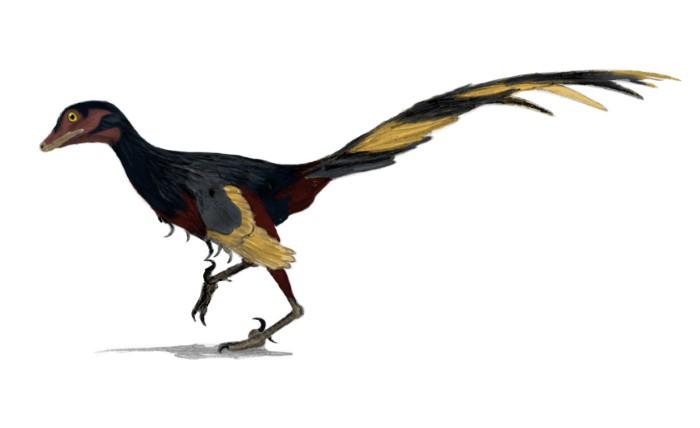vogels zijn dino's