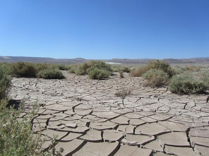 droogste woestijn Atacama
