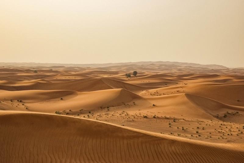 sahara grootste woestijn