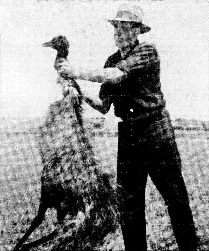 emoeoorlog