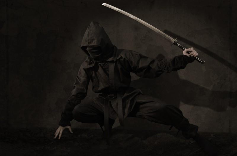 wie kon ninja worden