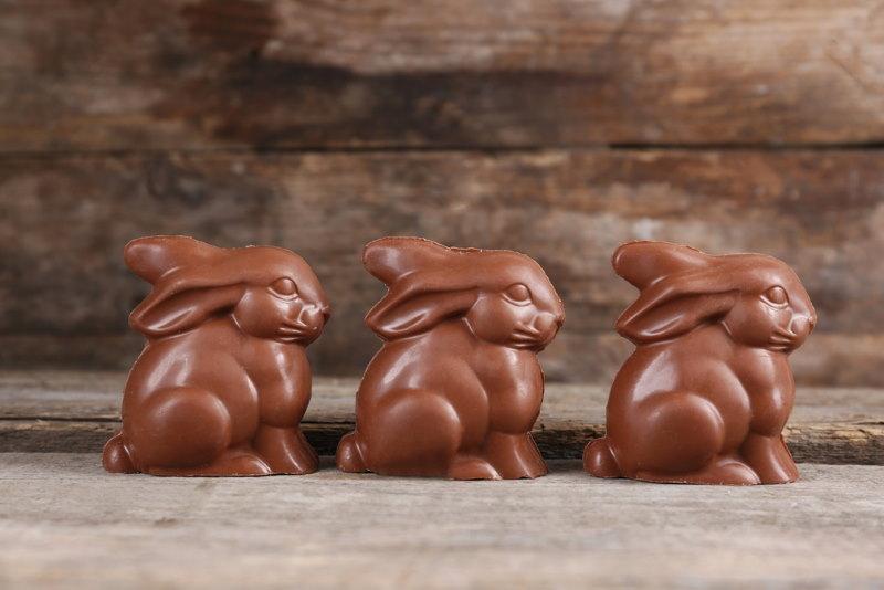 chocolade konijn