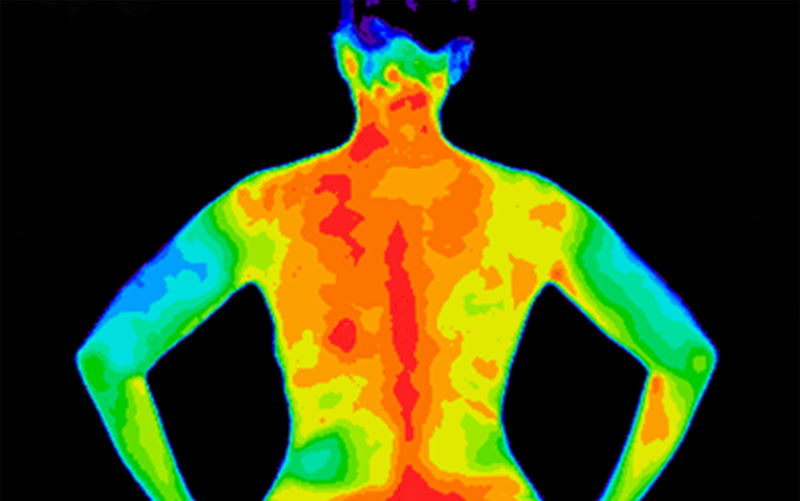 lichaamswarmte