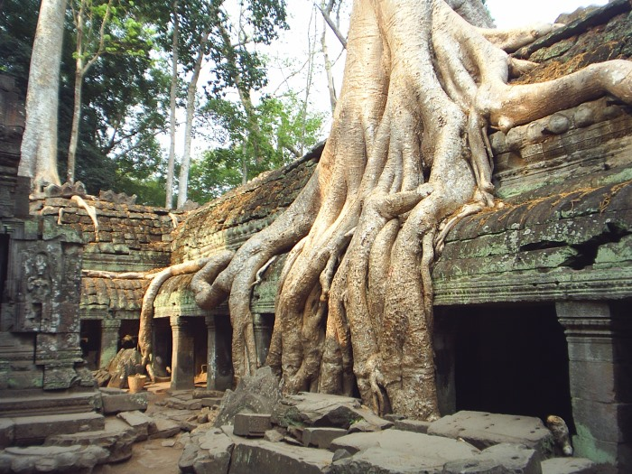 Angkor Wat Tomb Raider Boom