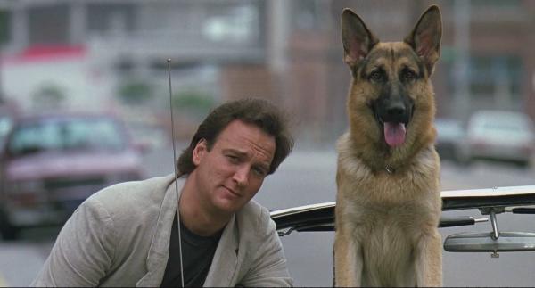 5f8f30ee028d6e Een groot aantal films portretteert de hond als trouwe metgezel van een  gefrustreerde politieagent. Dit is ook het geval in  K-9 .