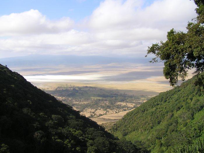 Ngorongo
