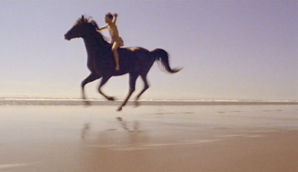 The Black Stallion - 1979