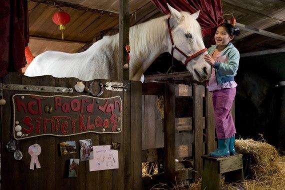 Waar is het paard van Sinterklaas