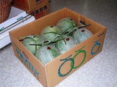 Yubari meloenen