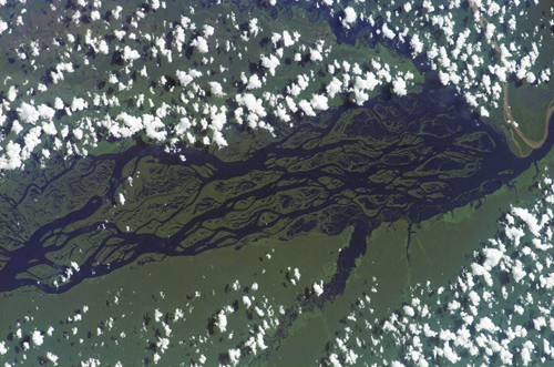 amazon_river_from_space