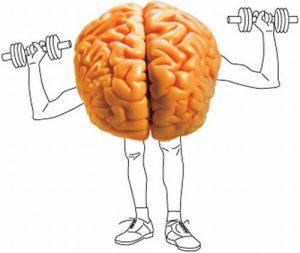 beter brein