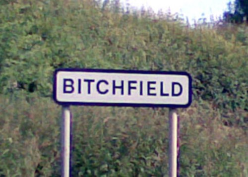 bitchfield