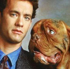 Top 10 Beste Honden Films