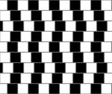 Top 10 Optische Illusies
