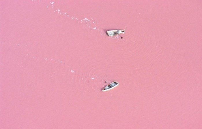 roze meer 3